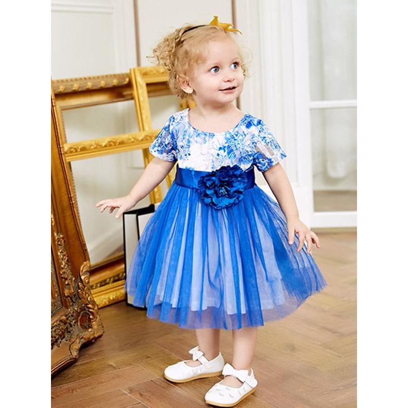 Paneled Blue Flower Short-Sleeve Layered Tulle Tutu Princess Dress for Toddlers Girls