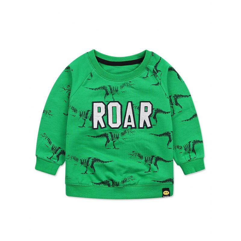 ROAR Dinosaur Jumper Baby Little Boys Sweatshirt Top
