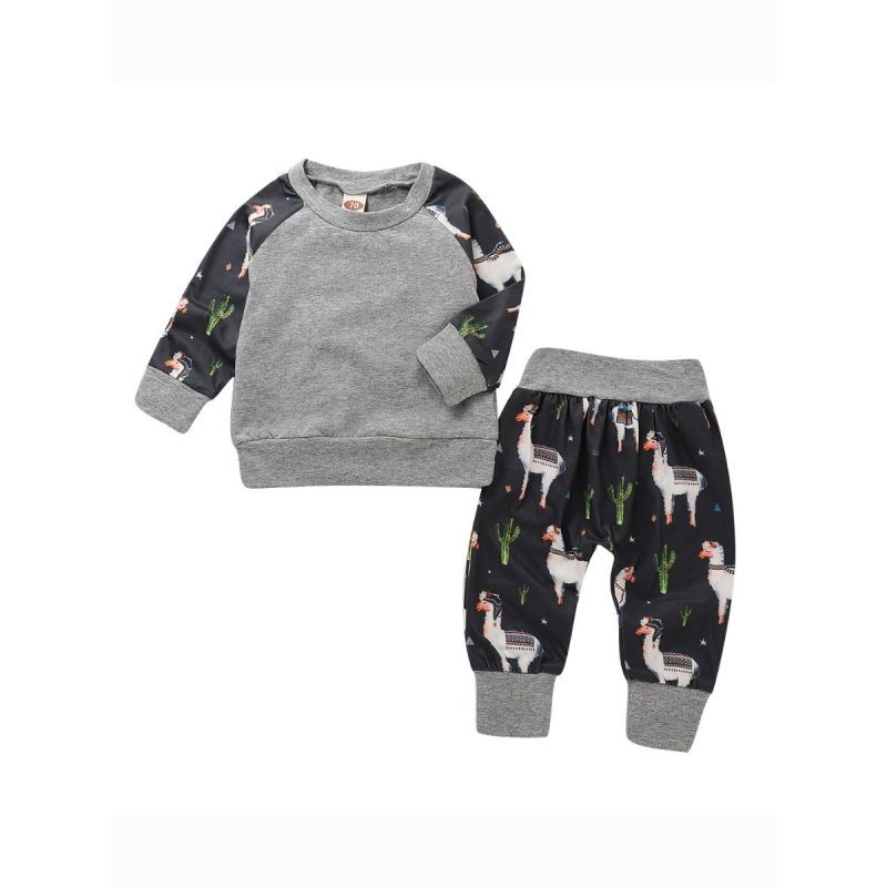 2-piece Spring Baby Casual Clothes Outfits Set Color Blocking Pullover+Cactus Horse Pants