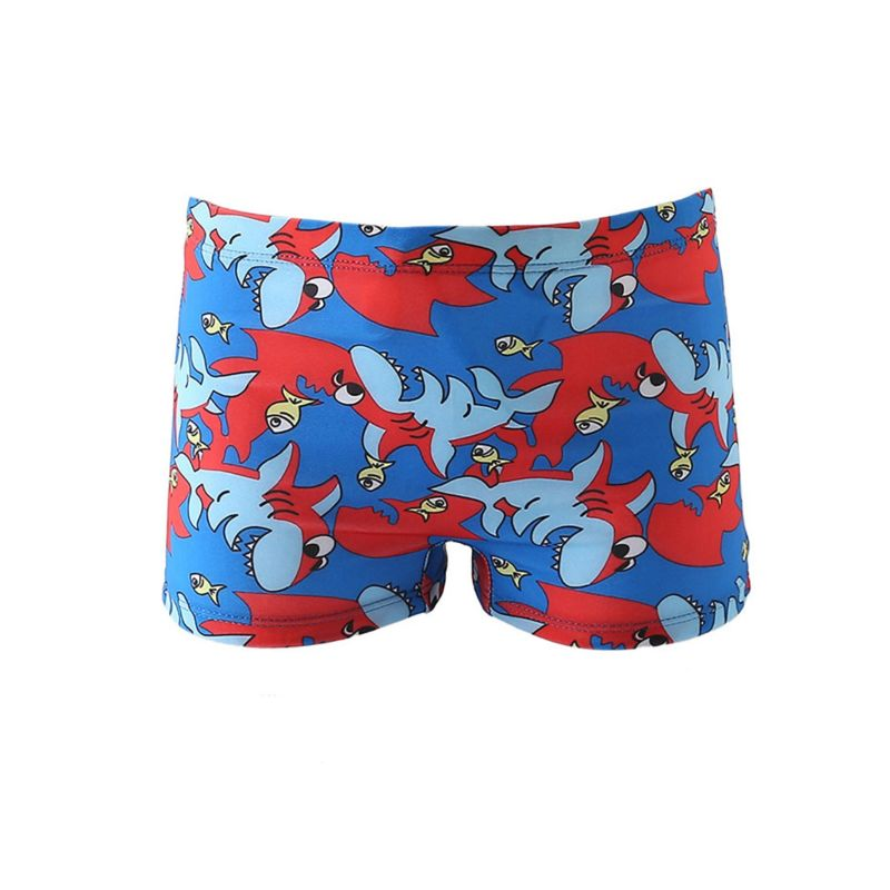 Baby Little Boys Printed Swimming Trunks
