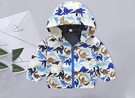 Wholesale Boys Coats Hoodies